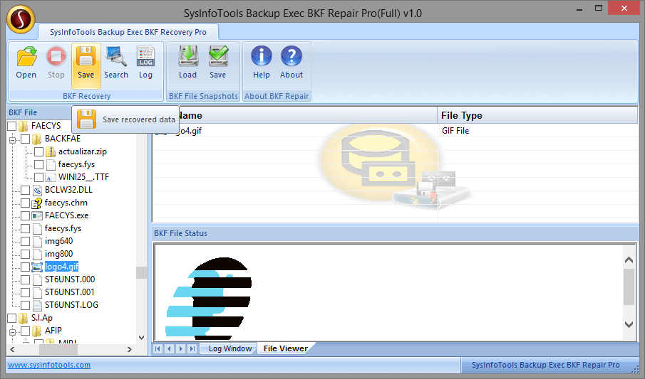 Backup Exec BKF Recovery Pro step-7